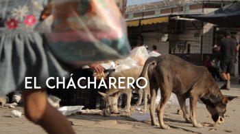 El Chacharero Mobile Banner